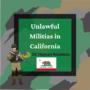 Are Armed Militias Legal? No!