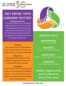 Youth Leadership Institute @ Online
